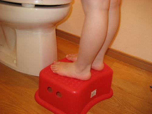 補助台~トイレトレーニング グッズ
